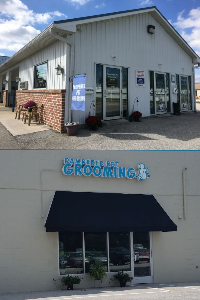 Dog grooming and bathing in Hanover PA 17331.  Groomer and groom services Hanover PA 17331